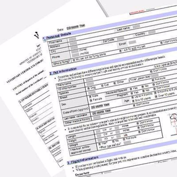 pets flight docs and reg checks